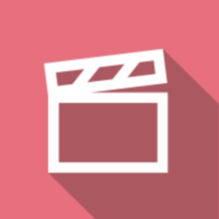 Stardust, le mystère de l'étoile / Matthew Vaughn  